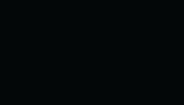 Dunn University